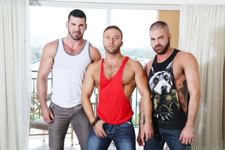 3 hairy muscle men with beards in tank tops.