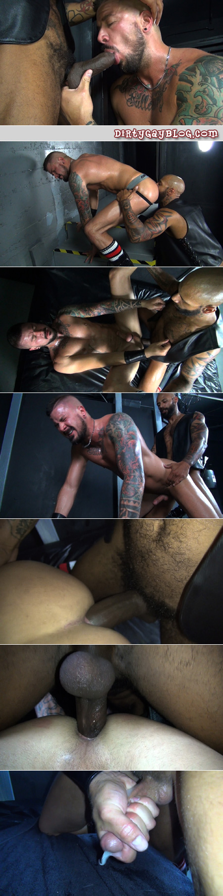 Inked interracial men in leather sucking and fucking bareback.