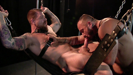 Beefy, bearded Daddy getting blown by a hairy submissive as he relaxes in a leather sling.
