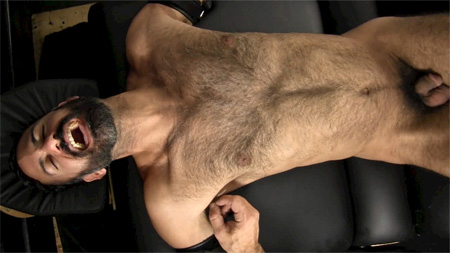 Hirsute Arab laughing hysterically as his armpit is tickled.
