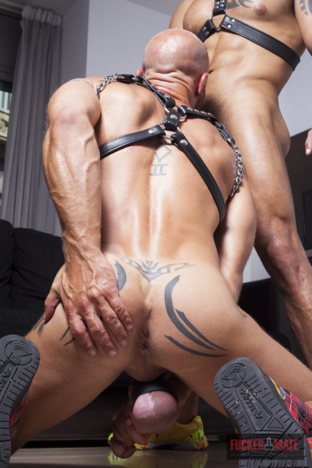 Muscular stud spreading his tattooed bubble butt while he sucks Latino cock.