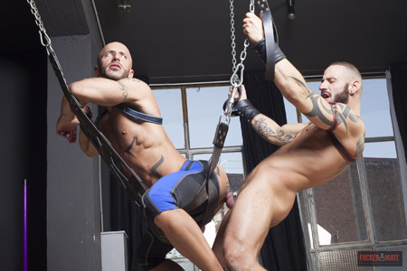 Inked muscular stud being fucked from behind by another muscleman in a leather sling.