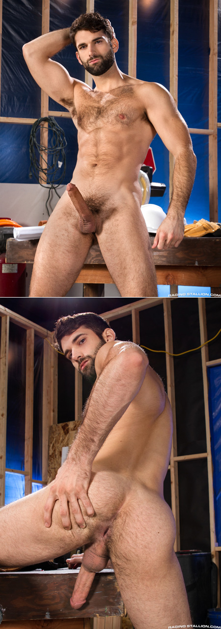 Bearded, hairy muscle hunk nude, flexing and showing off his erection and hairy hole.