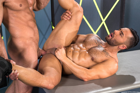 Short, hairy bottom with huge muscles taking a big dick in his ass.