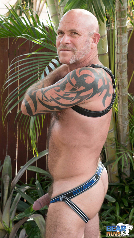 Tattooed bear exposing his muscular ass and thick cock in a leather harness and jockstrap.