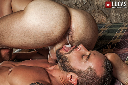 Bearded muscle hunk felching his cum out of a hairy muscular ass.