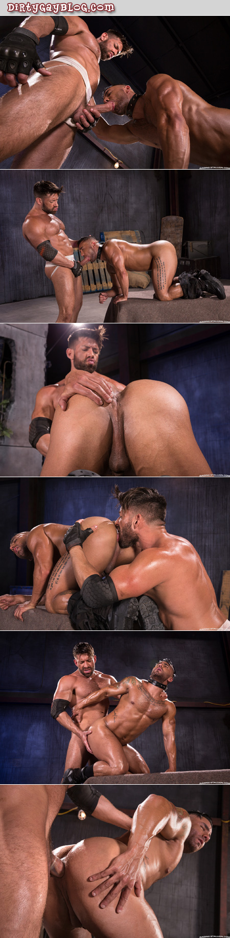 Muscle Daddy serviced by his gay bondage slave.