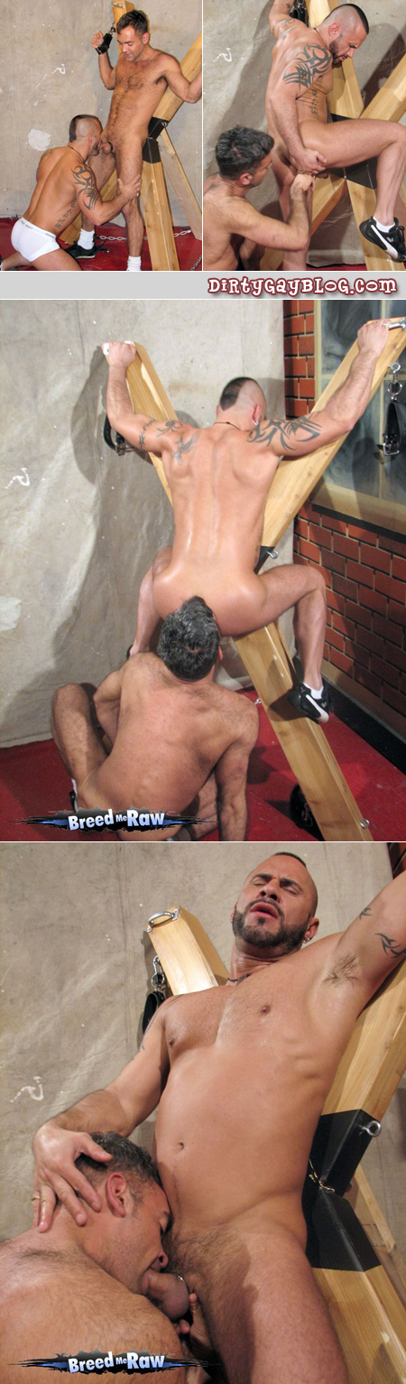 Bareback gay bathhouse action