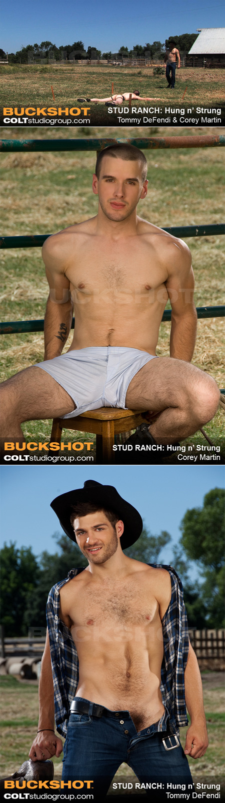 Lean male gets hog-tied and humiliated by another male cowboy.