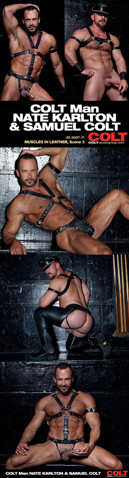 Samuel Colt steals the scene as an assertive bottom in black leather chaps and a harness.