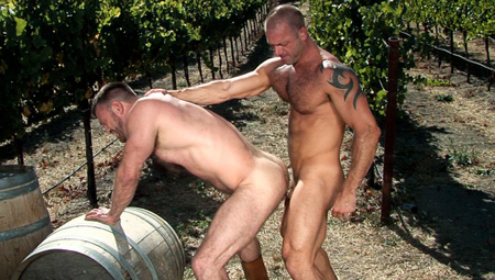 Two mature, muscular and hairy guys having gay sex outside in the vineyard.
