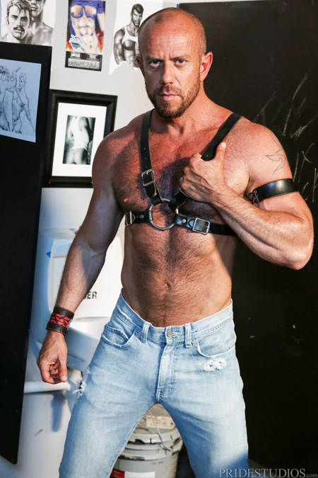 Hairy muscle Daddy in a leather harness and tight, faded blue jeans.