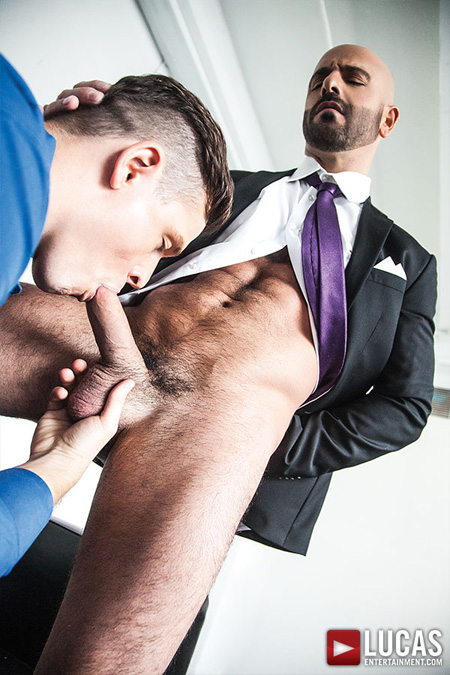 Muscular, hairy-chested businessman getting a gay blowjob while he's still wearing his suit.