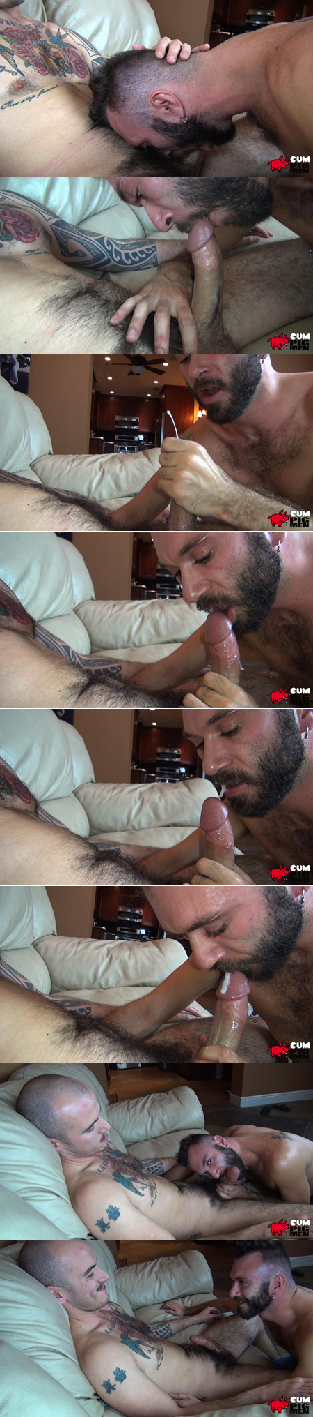 Young bearded stud blowing a tattooed guy and eating his cum.