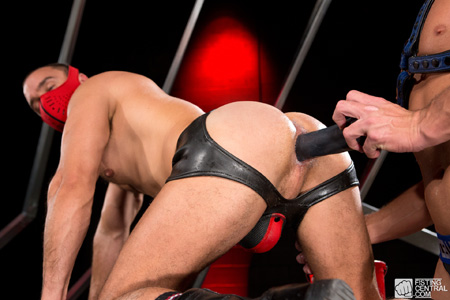 Leather man on all fours with a face mask on receiving a big black dildo in his ass.