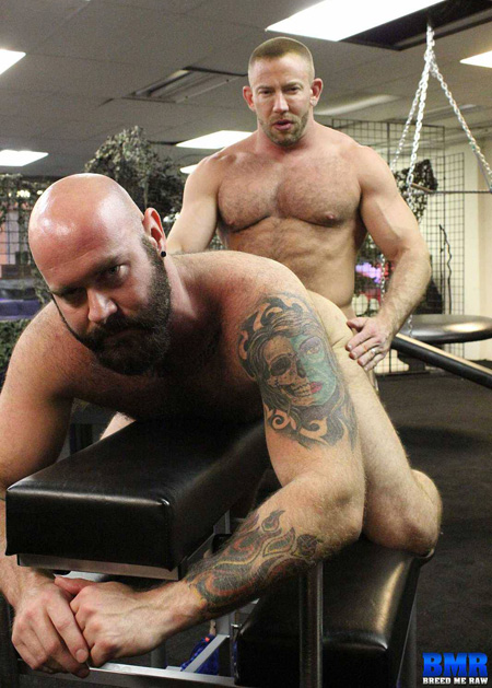 Burly, bearded bald man being fucked from behind bareback by a muscle bear.