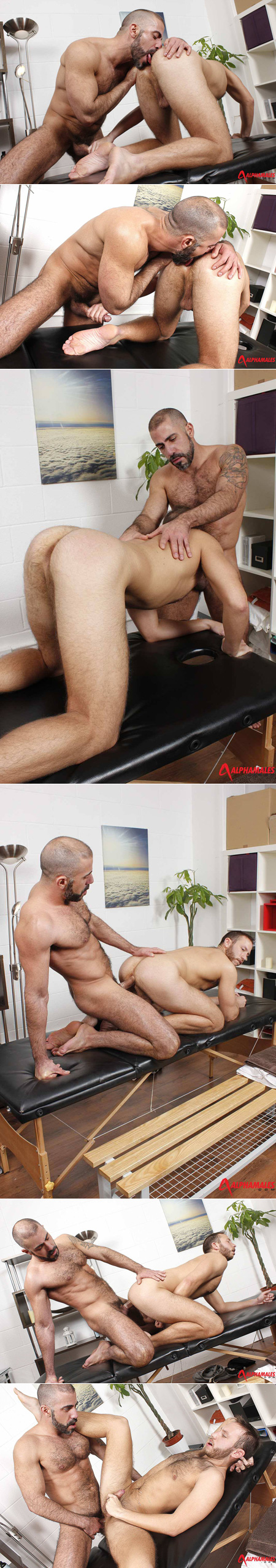 Hairy tattooed Daddy fucking his male masseur on the massage table.