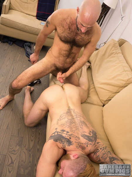 Hairy Daddy breeding his ginger cub.