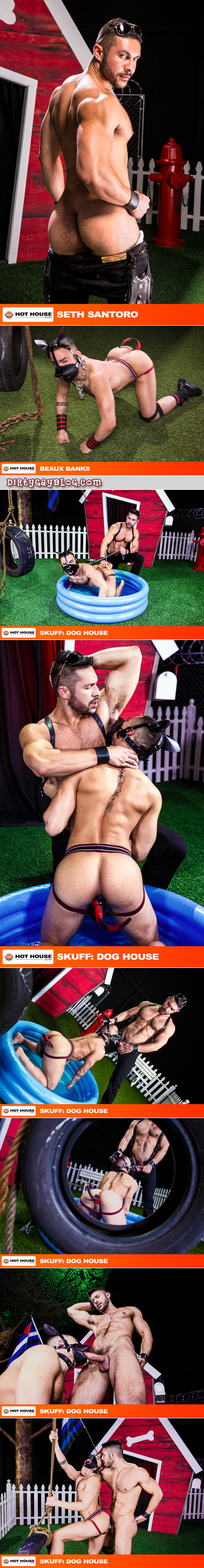 Leather puppy play leads to gay sex among hairy muscle men.