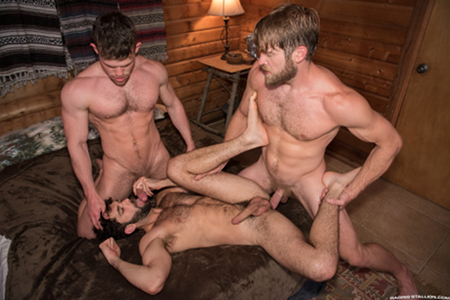 Hairy muscular men spit-roasting another furry guy.