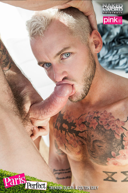 Tattooed blonde boy sucking a hard dick.