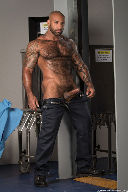 Giant hairy muscle bear blue collar worker exposing his hard cock.