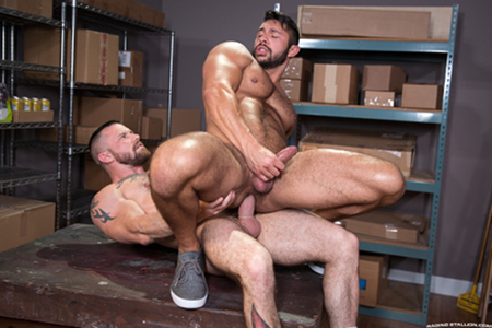 Thick, hairy muscle bear taking a thick cock in his ass.