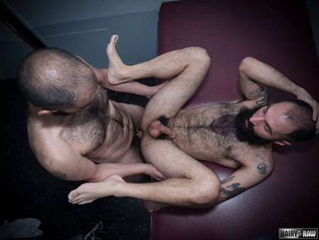 Extremely hairy tattooed gay men fucking bareback.